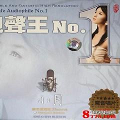 靓声王NO.1/ Vua Giọng Hay NO.1 - Tiểu Nguyệt