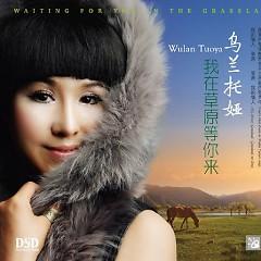 我在草原等你来/ Em Ở Thảo Nguyên Đợi Anh Đến - Wulan Tuoya
