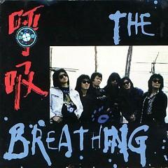 呼吸乐队/ The Breathing Band