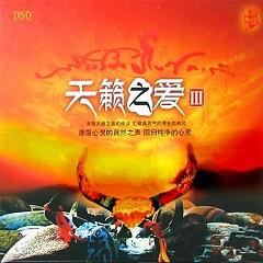 天籁之爱Ⅲ/ Tình Yêu Thiên Trúc 3