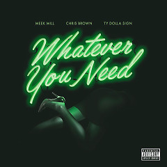 Whatever You Need (Single) - Meek Mill