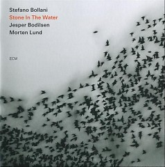 Stone  In The Water - Stefano Bollani