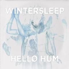 Hello Hum - Wintersleep