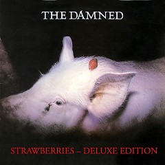 Strawberries (Deluxe Edition) (CD2)