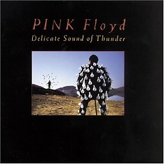 Delicate Sound Of Thunder (disc 1)