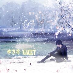 Setsugekka -The End of Silence- / Zan