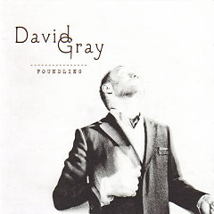 Foundling (CD1) - David Gray
