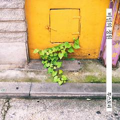 Secret Garden (Single) - 2Story