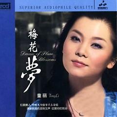 梅花梦/ Mai Hoa Mộng (CD1)