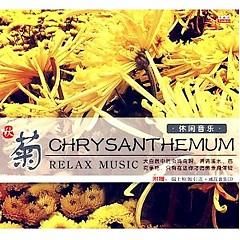 秋菊-休闲音乐/ Chrysanthemum Relax Music