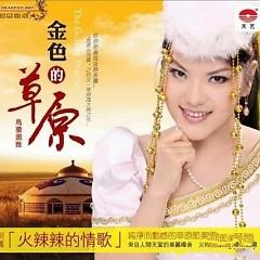 Album 金色的草原/ Thảo Nguyên Màu Vàng Kim - Ô Lan Đồ Nhã