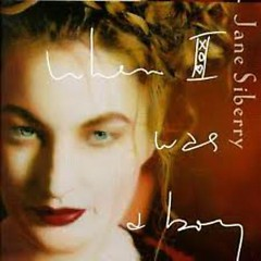 When I Was A Boy - Jane Siberry