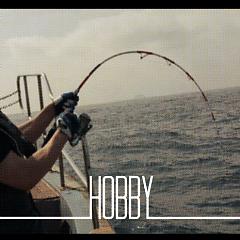 Hobby (Single)