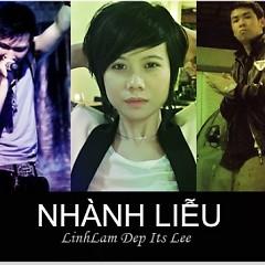 Nhành Liễu (Single 2012) - Linh Lam