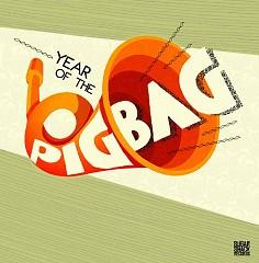 Year Of The Pigbag