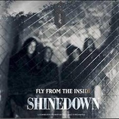 Fly From The Inside EP