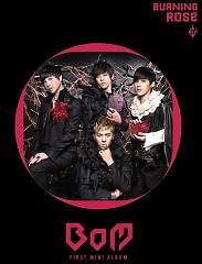 Burning Rose - BoM