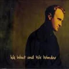 We Wait And We Wonder (Single)