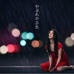 やぶれかぶれ (Yabure Kabure)  - Shimatani Hitomi