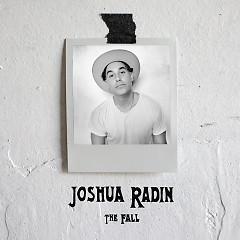 The Fall - Joshua Radin
