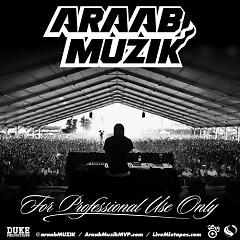For Professional Use Only (CD1) - Araab Muzik