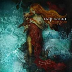 Ursa - Novembre