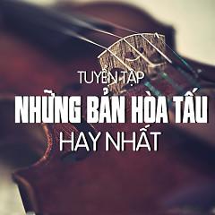 Tuyển Tập Nhạc Hòa Tấu Hay Nhất - Various Artists