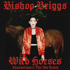 Wild Horses (Thundatraxx & The SKX Remix) (Single) - Bishop Briggs