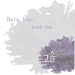 Hate You Love You