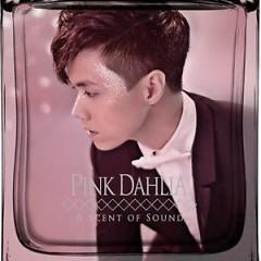 Pink Dahlia - Trương Kính Hiên