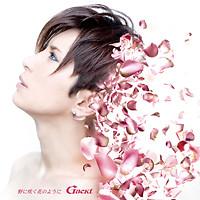 No ni Saku Hana no You ni (Single)