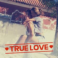 True Love - Various Artists