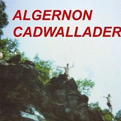 Fun - Algernon Cadwallader