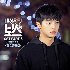 Introverted Boss OST Part.3 - Sandeul ((B1A4))