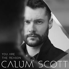 You Are The Reason ( Single) - Calum Scott