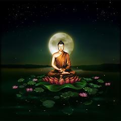 Ca Khúc Phật Pháp Nhiệm Màu-Lời Thầy Thích Giác Thanh-Kính Gữi Tặng Qúy Vị