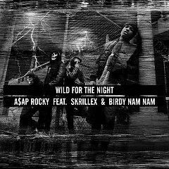 Wild For The Night (Single) - Birdy Nam Nam