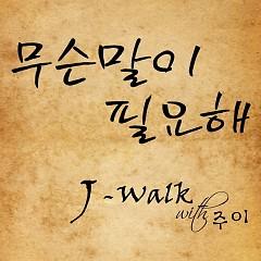 Museunmari Pillyohae (무슨말이 필요해) - J-Walk