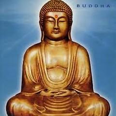 Buddha - PC Davidoff