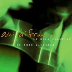 So Much Shouting So Much Laughter (CD1) - Ani DiFranco