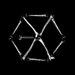 Monster (LDN Noise Creeper Bass Remix)