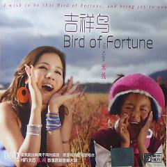 吉祥鸟/ Bird Of Fortune - Mễ Tuyến