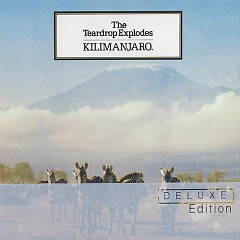 Kilimanjaro (Deluxe Edition) (CD3) - The Teardrop Explodes