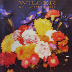 Wilder (2000 Reissue) (CD1) - The Teardrop Explodes