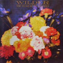 Wilder (2000 Reissue) (CD1) - The Teardrop Explodes