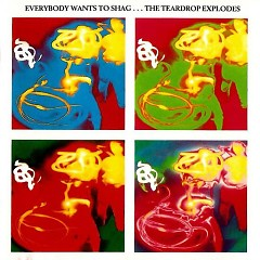 Everybody Wants to Shag... The Teardrop Explodes  - The Teardrop Explodes