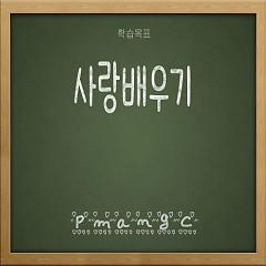Learning Love (Single) - PmangC