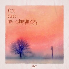 You Are My Christmas (Single) - 2Bic