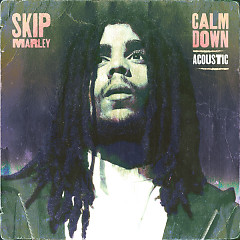 Calm Down (Acoustic) - Skip Marley
