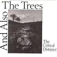 The Critical Distance (EP)